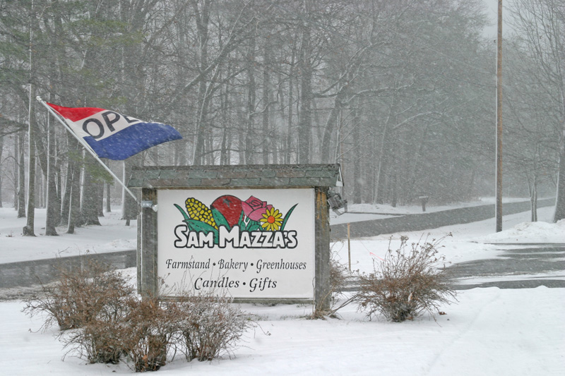 Sam Mazzas Winter Sign